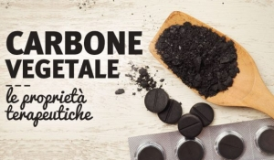 Carbone-vegetale-proprieta-usi-640x390