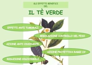 tè-proprietà-salutari